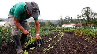Importancia de la Agricultura Orgánica - TvAgro por Juan Gonzalo Angel