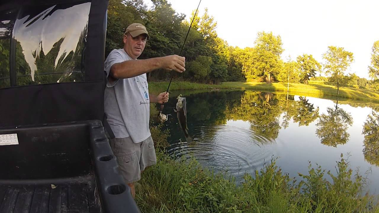 Fishing with catalpa worms youtube for Catalpa worms fishing