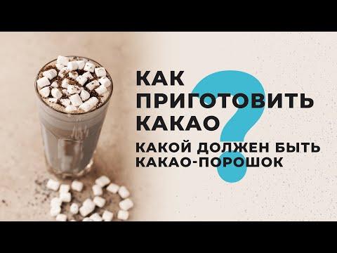 Как приготовить какао на молоке? Какой выбрать какао порошок? Как сделать (сварить) какао рецепт