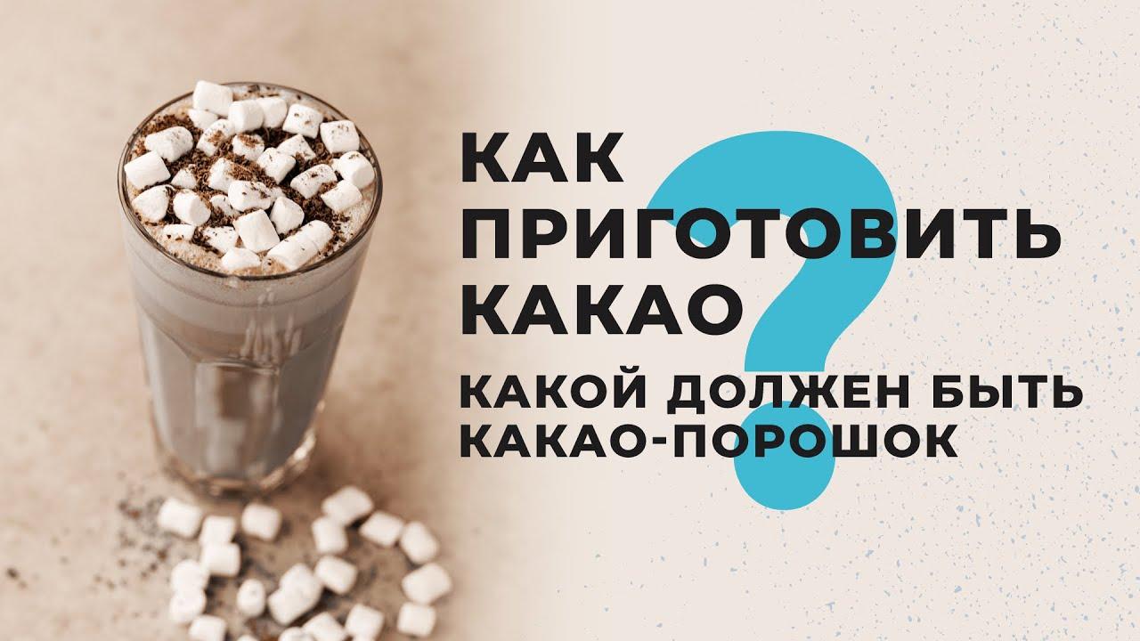 Как приготовить какао. Какой должен быть какао-порошок?
