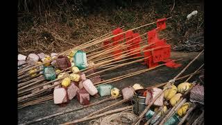 [필름사진] 필름카메라로 찍은 힐링되는 일본 후쿠오카 …