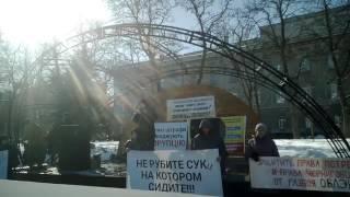 Митинг предпринимателей Чернигова + 5.10(3)