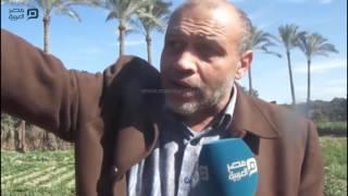 السرقات في أبو صوير.. من العجول لحديد الكباري والأهالي: الحقونا