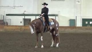 Ellie Becker Horsemanship video 4