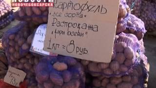 Ярмарка «Дары осени» предлагает сельхозпродукцию местных производителей(, 2015-09-17T06:56:55.000Z)