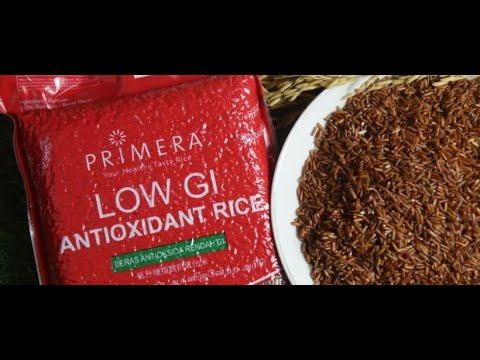 Introduction to Primera Red Rice