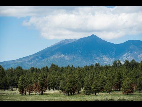 Humphreys Peak, Flagstaff, AZ - SnapChick Hikes