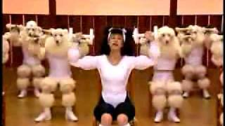 Mariko Takahashi's Fitness Video(This is a mesmerizing and frightening video. It's a word-for-word parody of Susan Powter's first workout video, featuring poodles and a crazy poodle-woman., 2006-03-16T05:51:00.000Z)