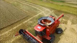 chorum grain farms wheat harvest 2016 case ih 8240 and 2588 combines dji phantom 3 footage