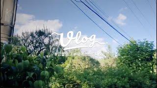 웨딩플래너 Vlog | 웨딩플래너의 웨딩촬영 현장에 가…