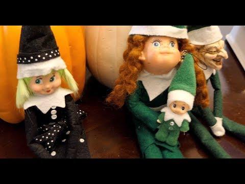 Elf on the Shelf: Baby Evergreen!