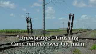 Sugar Cane Railway/QR Crossings - Meadowvale