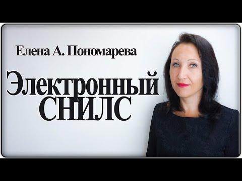 Электронный СНИЛС - Елена А. Пономарева