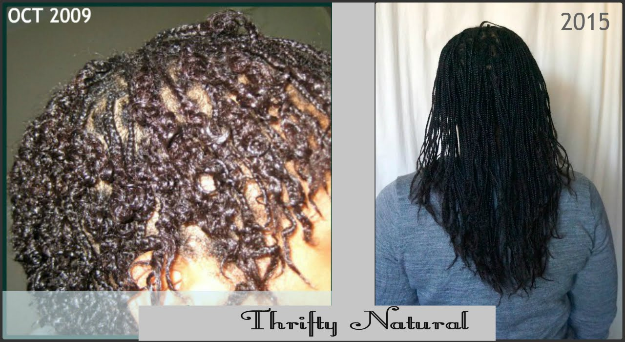 Mini Braids Over 6 Years Long Natural Hair Thrifty