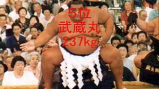 歴代力士体重Top10