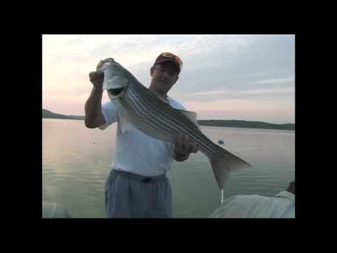 Late Summer Stripers