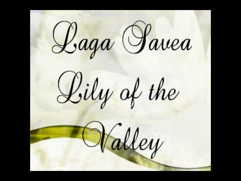 Lily of the valley by Laga Savea
