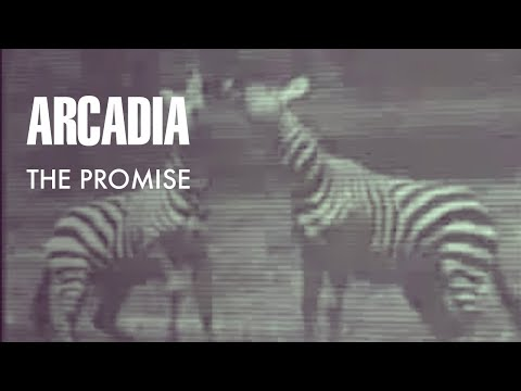 Arcadia - The Promise (Official Music Video)