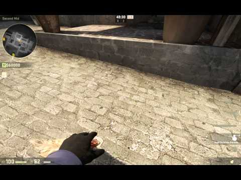 Petting a chicken (CS:GO style)
