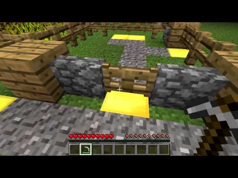 Minecraft Blocks & Items: Fence Gates