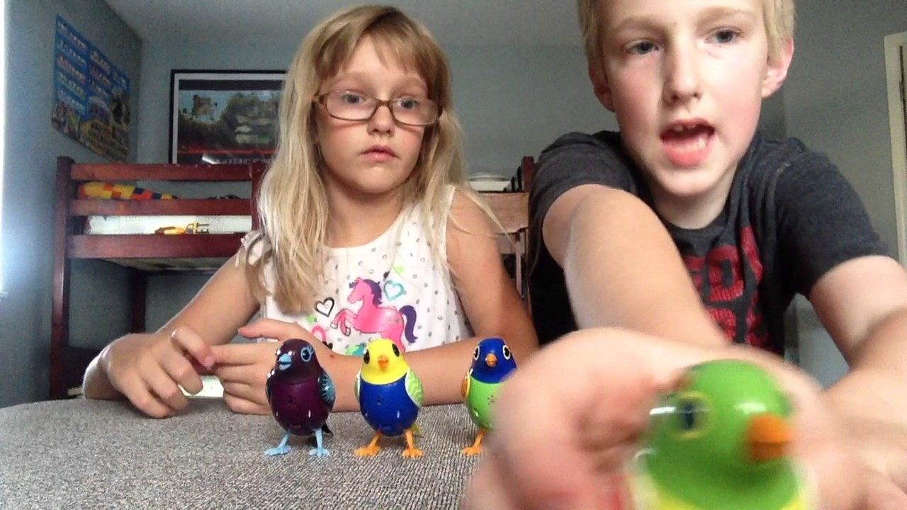 Digi Birds-Rollin with Team Nolan