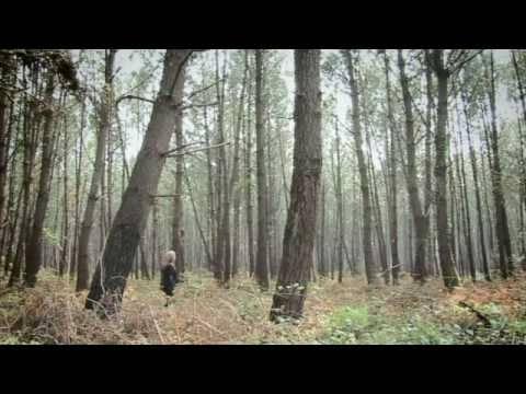 Leddra Chapman - Story