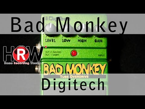 Bad Monkey Pedal from Digitech, and why audio nuts must own one.