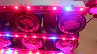 LED фитолампа за 1000$! Обзор, измерение спектра, PPFD. Cree, Citizen, Osram, MeanWell