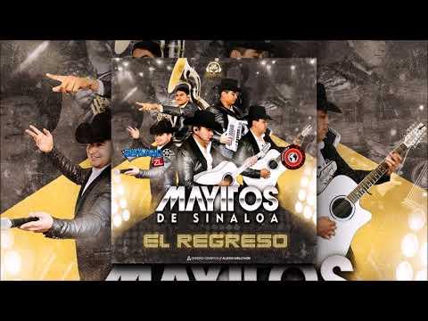 Los Mayitos De Sinaloa Disco Completo (El Regreso )