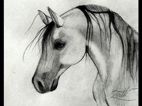 Como Desenhar Um Cavalo Youtube