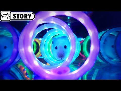 Hamster in a transparent Cube maze with an aquarium, neon Cyberpunk and Minecraft 🐟 Homura Ham