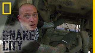 Stuck in a Truck | Snake City