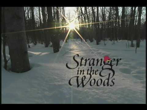 quotstranger in the woods the moviequot a childrens movie by