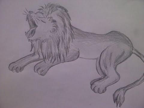 Zeichnen lernen für Anfänger- Einen Löwen malen