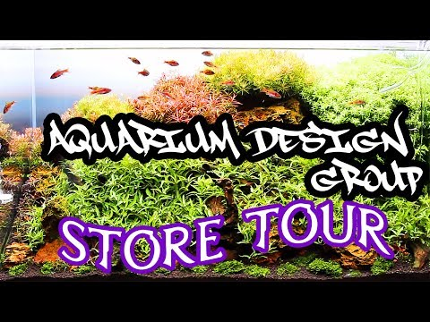 Aquarium Design Group Store Tour 7/1/17