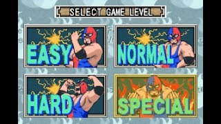 【GBA】ファイプロ Fire Pro Wrestling 2 Ironman Road -Special Battle Royal