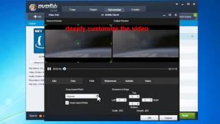 Professional 3D video converter
