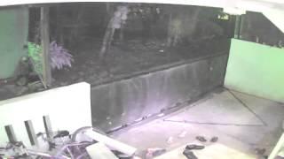 penampakan sosok gaib terekam kamera cctv