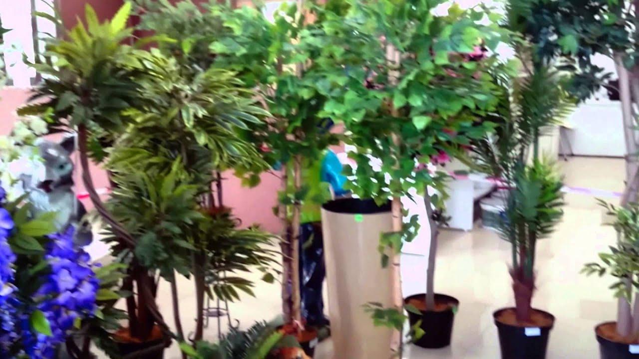 В интернет-магазине икеа вы найдете: широкий выбор комнатных растений в горшках, цены, фото, характеристики. Доставка по москве. Москва; омск; санкт-петербург; ростов-на-дону; адыгея-кубань; самара; екатеринбург; уфа; нижний новгород; казань; новосибирск. Зачем выбирать город?