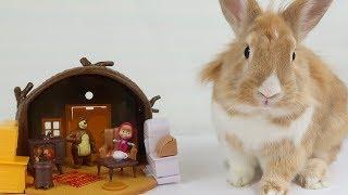 МАША И МЕДВЕДЬ И КРОЛИК ЧУЧА. Кролик Чуча в гостях у Маши и Медведя