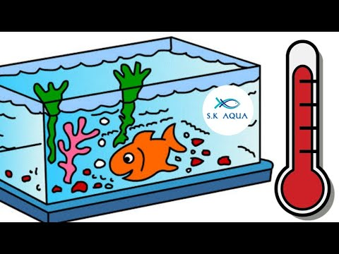 How To Control The Temperature In Fish Tank |TAMIL|