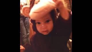 Mariya monkey 2016