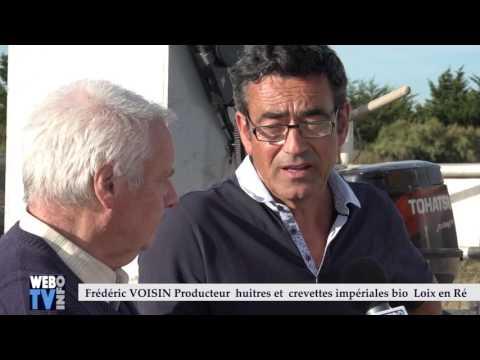 Frédéric VOISIN - Producteur  huitres et  crevettes impériales bio   Loix en Ré