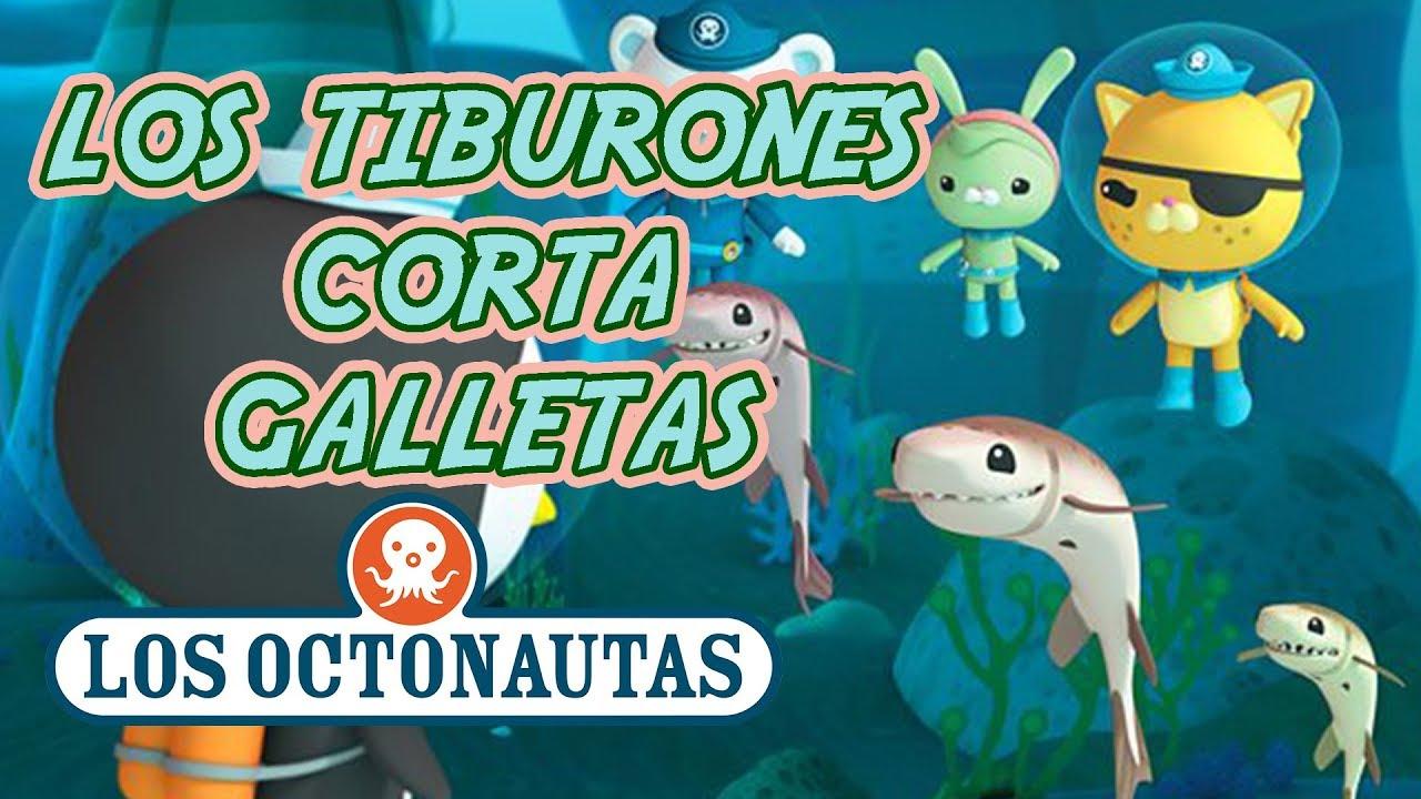 Los Octonautas Oficial en Español - Los Tiburones Corta-Galletas | Episodio 39