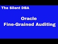 Oracle Fine-Grained Auditing