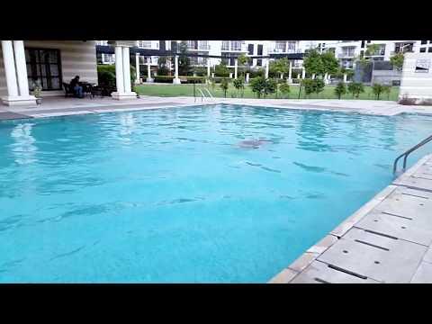 UnderWater Swimming || Omaxe City Rohtak || Nishank Magoo