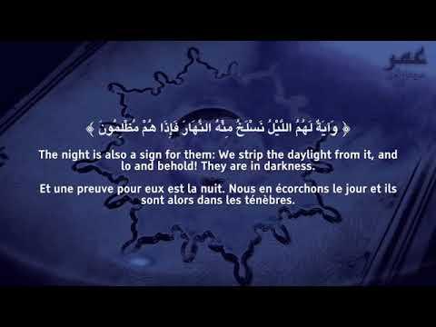 Surah Yasin FULL   Omar Hisham Al Arabi...