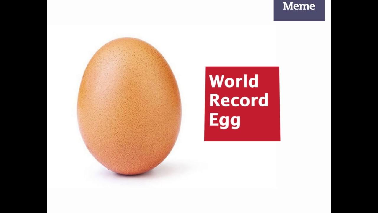 Amazon Com World Record Egg Meme Most Liked T Shirt Clothing