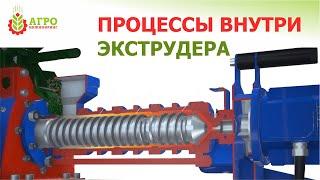 Принцип работы экструдера (Для производства кормов). ХИМИЯ и ФИЗИКА процесса