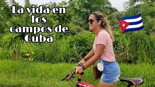 Así es la vida en los campos de Cuba ? desde otra perspectiva./ RosyTV